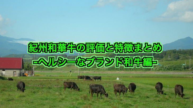 紀州和華牛の評価と特徴は?ヘルシーで美味しいブランド和牛!