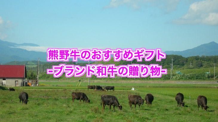 熊野牛のおすすめギフトセット!お祝い事からコンペ景品まで使える!