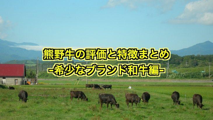 熊野牛の評価と特徴は?希少なブランド和牛を徹底チェック!